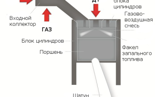 Что такое двухтопливный двигатель